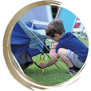 Family friendly camping in the New Forest